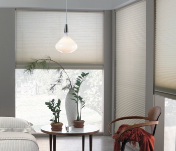 cellular shades in Dallas house