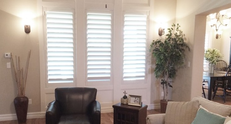 Dallas living room white shutters